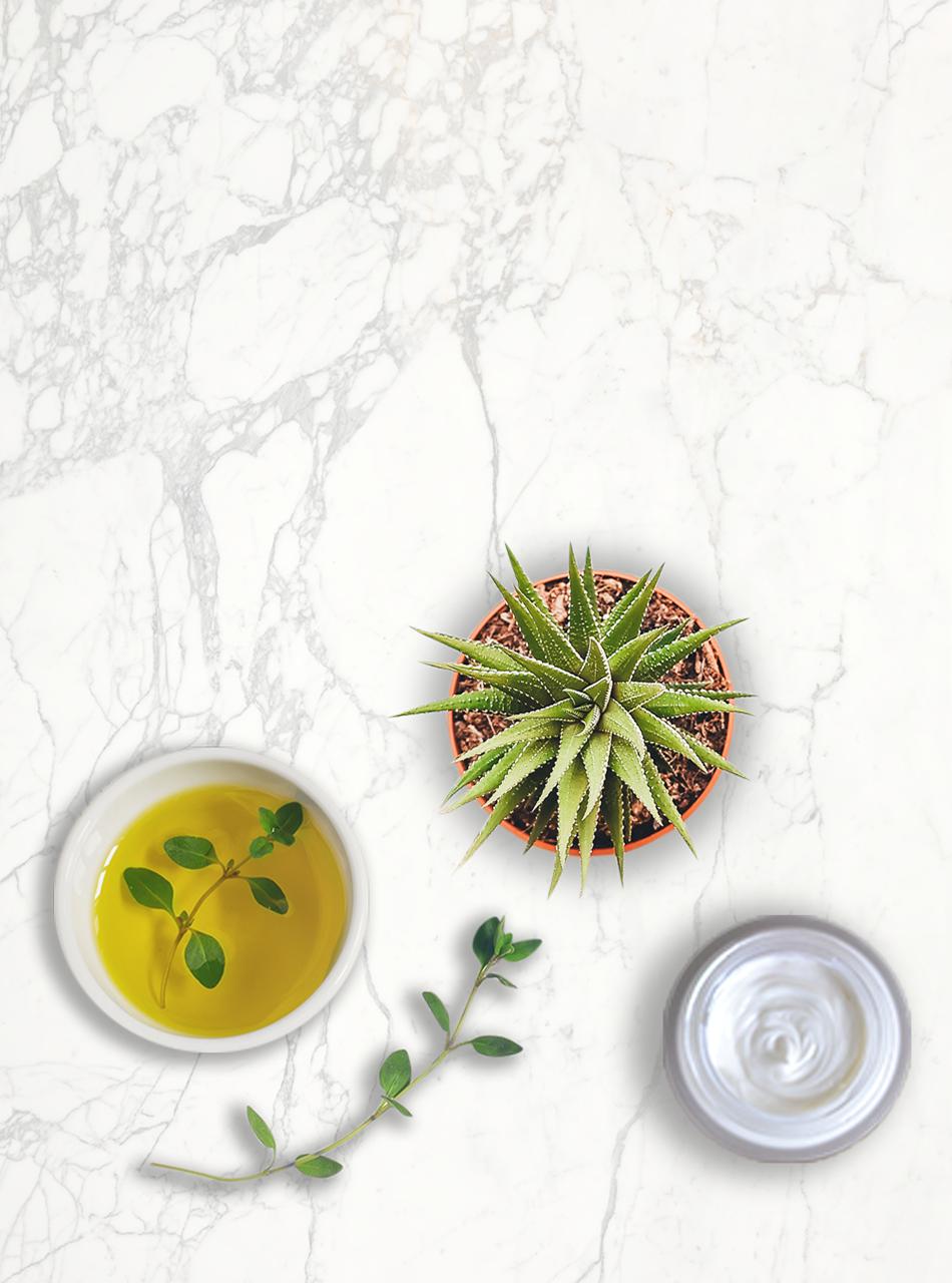plants on marble